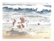 Spirit on the Beach