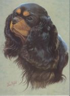 Black and Tan Painting Style Greetings Card