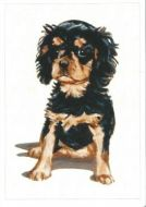 Adorable Pups Black and Tan Greetings Card