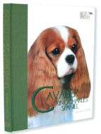 Best of Breed Cavalier King Charles Spaniel Book