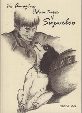 Amazing Adventures of Superboo