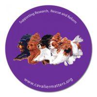 Cavalier Matters Fridge Magnet