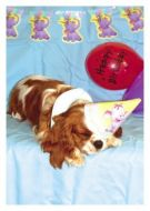 Blenheim Birthday Card