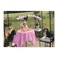 The Party Gang Cavalier Birthday Card