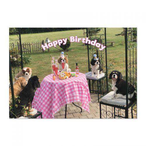 The Party Gang Cavalier Birthday Card