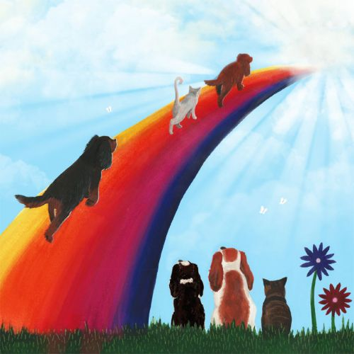 Rainbow Bridge Condolence Card