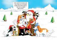 Santas Knee (Notelet) Cards