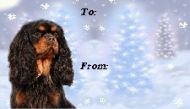 Cavalier Christmas Gift Labels - All Four Coat Colours