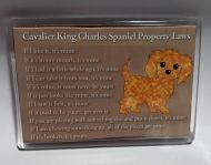 Property Laws Magnet