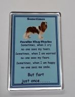 Sometimes.. Fridge Magnet