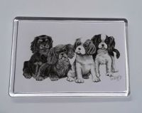 Pencil Puppies Magnet