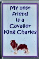 'My Best Friend..' Cavalier Fridge Magnet