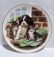 Royal Albert Collectors Plate