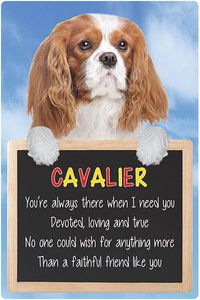 3D Cavalier Home Hang up Signs