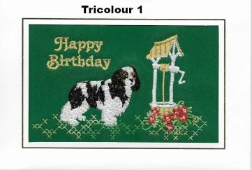 Embroidered Tricolour Birthday Cards - Two designs