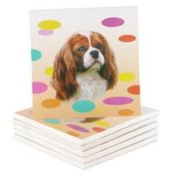 Dotty Cavaliers Mini Magnetic Pads