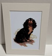 Aristocratic Black and Tan Spaniel Print
