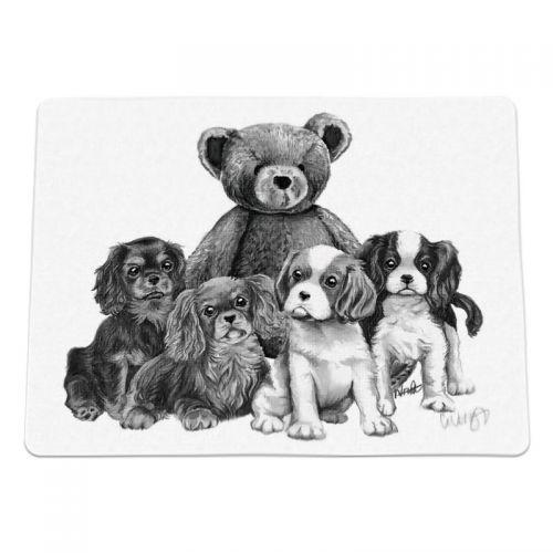 Puppy Blanket Our Teddy