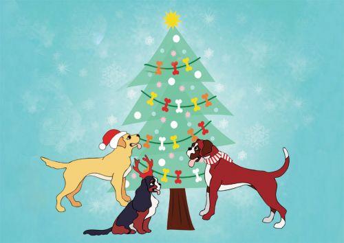 Bones Galore Christmas Card 5 Pack
