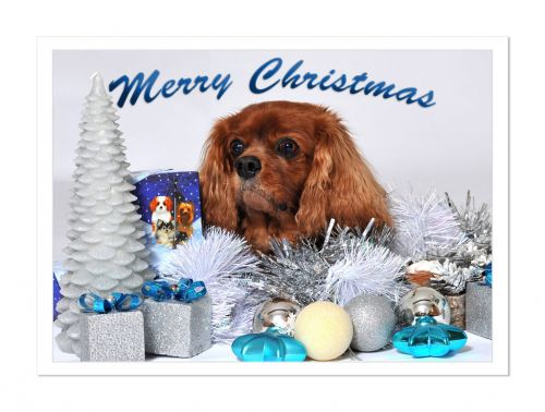 Ruby Loves Christmas Card