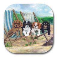 Beach Boys Coaster