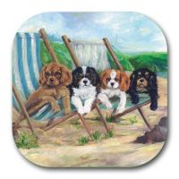 Beach Boys Coaster