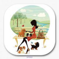 Four Seasons Coaster