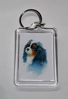 Painting Style Keyrings in Blenheim and Tricolour
