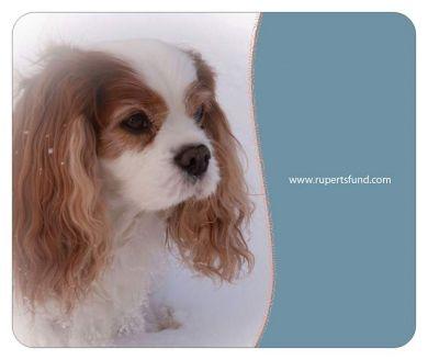 Rupert's Fund Mouse Mat
