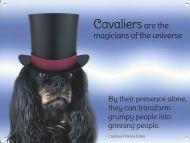 Cavalier Magic