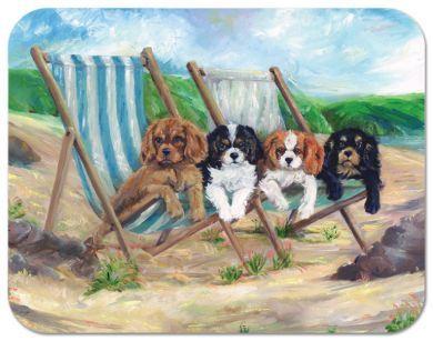 Beach Boys Placemat