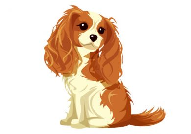 Image result for Cartoon Cavalier King Charles Spaniel