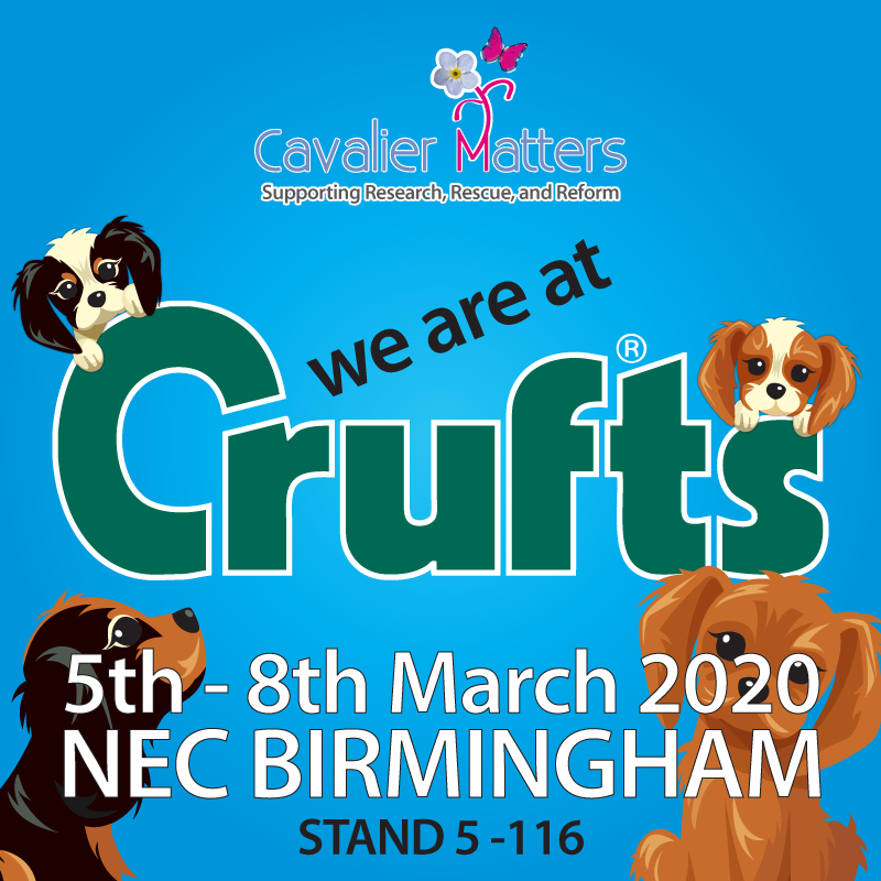 Cavalier Matter at Crufts 2020